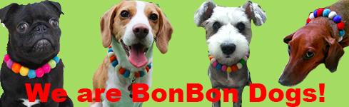 オープン記念キャンペーン中!BONBONコサージュをプレゼント